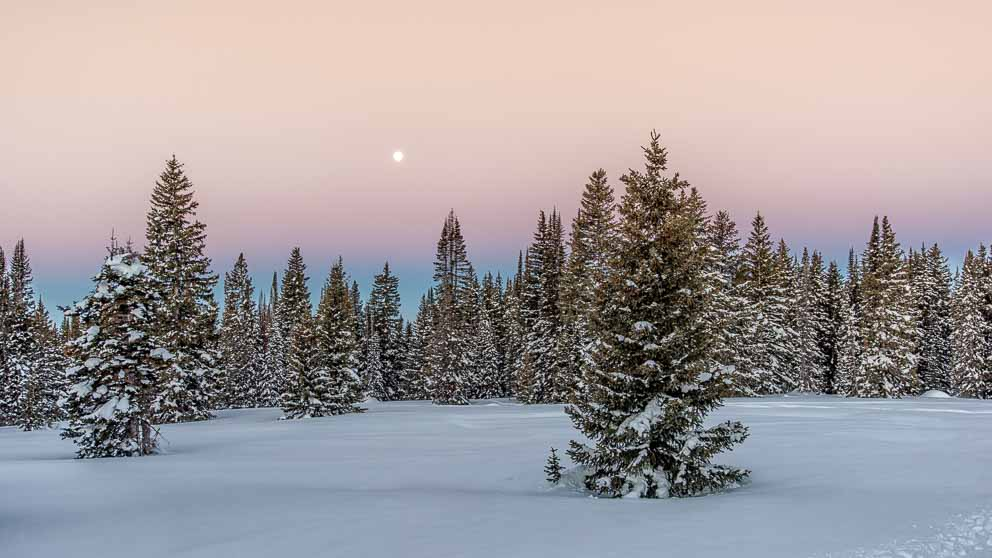 Moonset over snowy landscape by Mark Ruckman