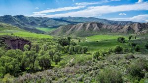 Lush Green Valley of Colorado by Mark Ruckman