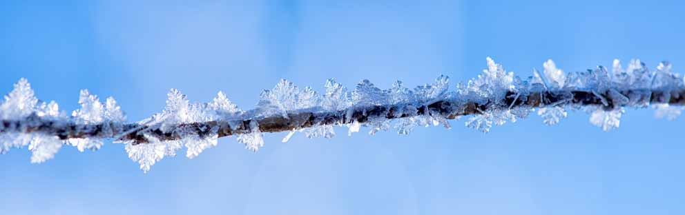 Frozen Ice forms around a warm winter wire and shows it lightness by Mark Ruckman