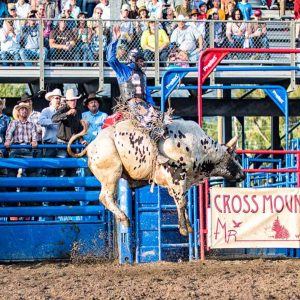Bull rider takes to the air by Mark Ruckman