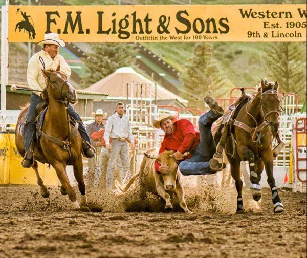 Steer Wrestling by Mark Ruckman