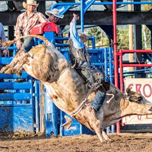 Bull Rider on a Bull with a twist and kick by Mark Ruckman